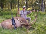 Massive Bull Elk taken at Circle E Ranch in Texas