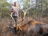 Elk hunting in Texas - William Gassiot - Gold Medal Elk Bull
