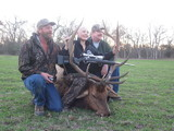Great Elk Bull - Natalie Hill group - Circle E Ranch hunt