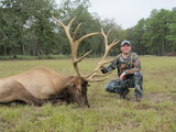 Big Bull Elk taken at Circle E Ranch in Texas by John Nowack