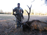 Bull Elk taken at Circle E Ranch by Matt Dilick