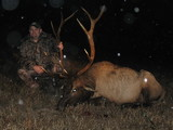 Great Elk Bull taken by Steven Deblasio at Circle E Ranch in Texas