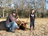 Elk Hunting in Texas - Nice Elk Bull harvested by Jake Schaper at Circle E Ranch in Texas
