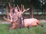 Trophy Elk Bull Hunts - Elk Bull harvested by Bryan Fiegel at Circle E Ranch in Texas